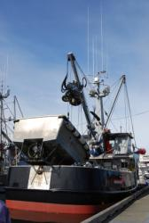 Become an Alaska fishing boat deckhand photo